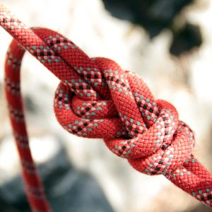 Close-up of an eight knot
